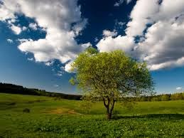 natural look of sky