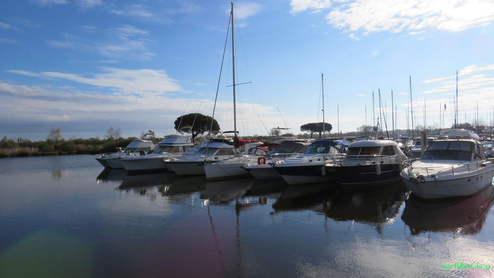 le port du Teich (33)