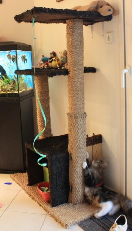 arbre chats. Black Bedroom Furniture Sets. Home Design Ideas