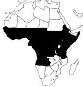 lugares donde existe la mosca, se corresponden con África subsahariana