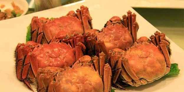 Kepiting Yangcheng palsu