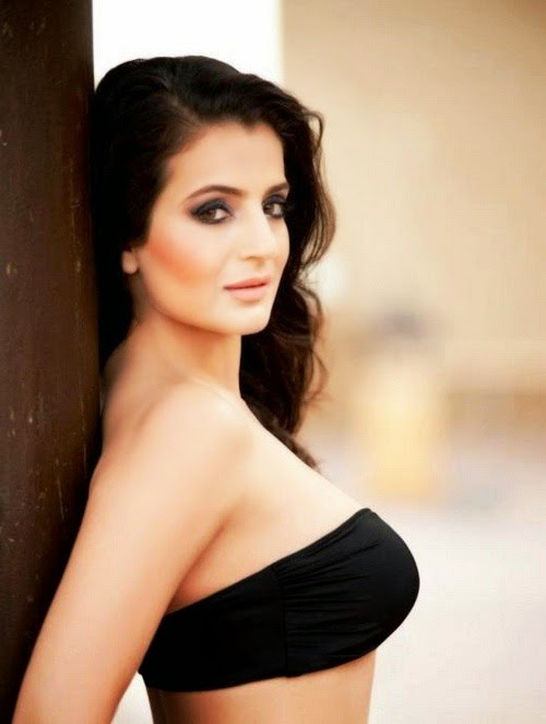 Ameesha Patel HD Wallpapers Free Download