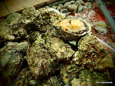 thehomefoodcook - four days of hong kong - oysters