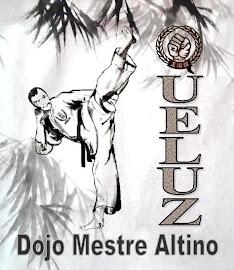 Dojo Mestre Altino - Queluz