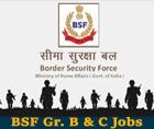 bsf-recruitment-2015-head-constable-si vacancy