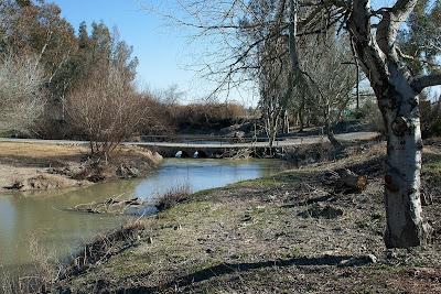 Vado sobre el río Guadalete