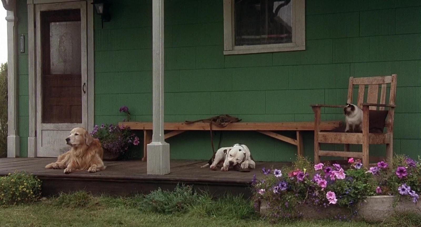 Volviendo a Casa: Una Aventura Increible (1993) HD 1080 Dual