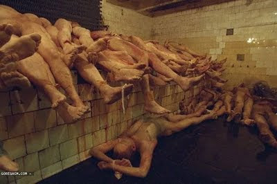 Kilang proses organ manusia