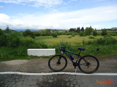Bicicleta Sprint Maverick 29