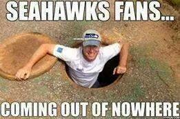 Seahawks Fans... coming out of nowhere