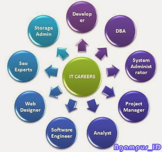 Choosing an IT Career Path