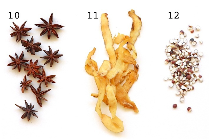 chinese alternative medicine for health and treatment of illness with herbs like star anise, solomons seal, fox nut