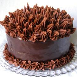 Gâteau de l'amant de chocolat extrême