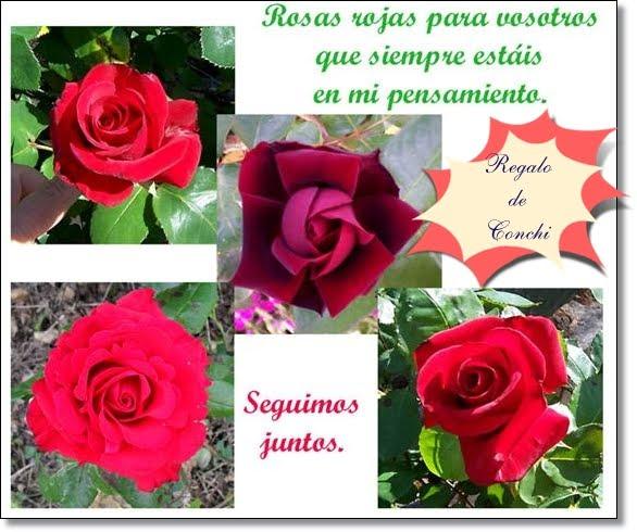 Rosas con Mensaje. Regalo de Conchi