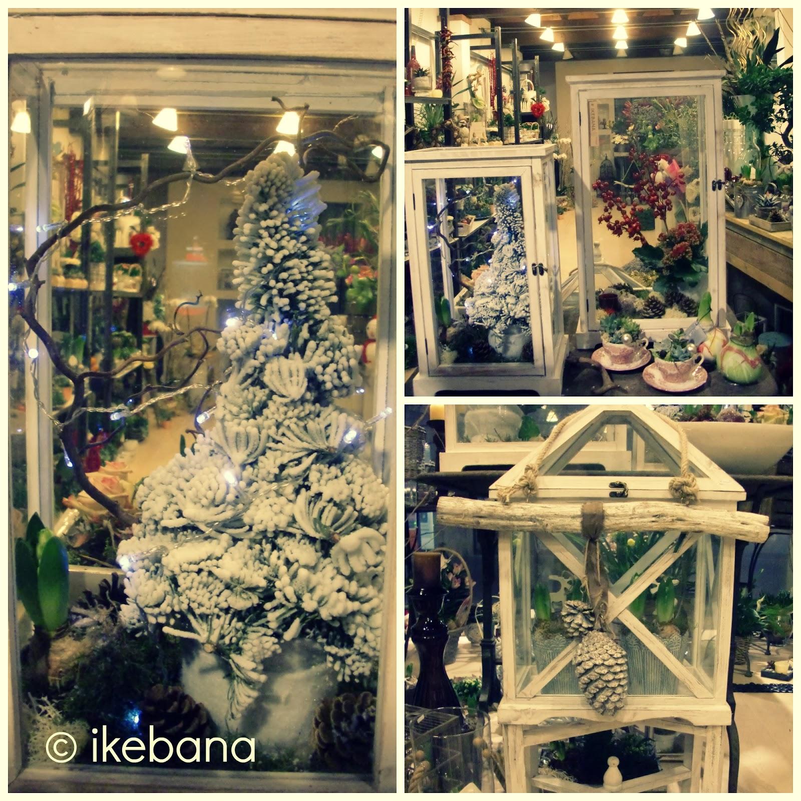 Ikebana fleurs lanterne serre lanterne serre - Natale in casa addobbi ...