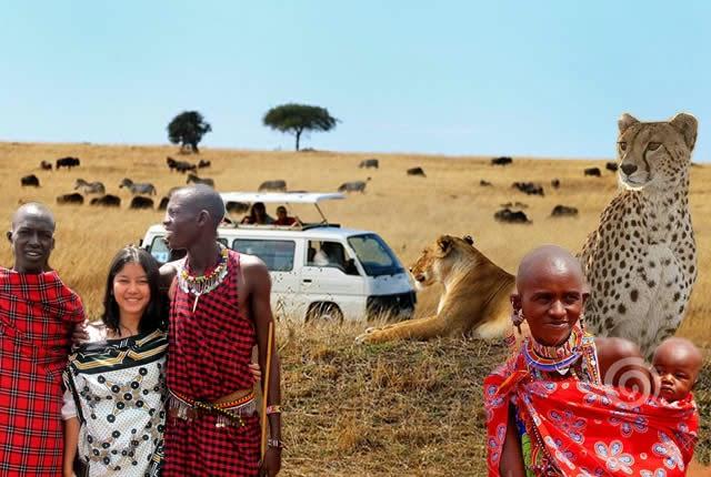 Parque Nacional Masai Mara, Quênia