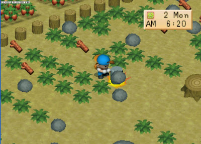 Harvest Moon : Back To Nature 2