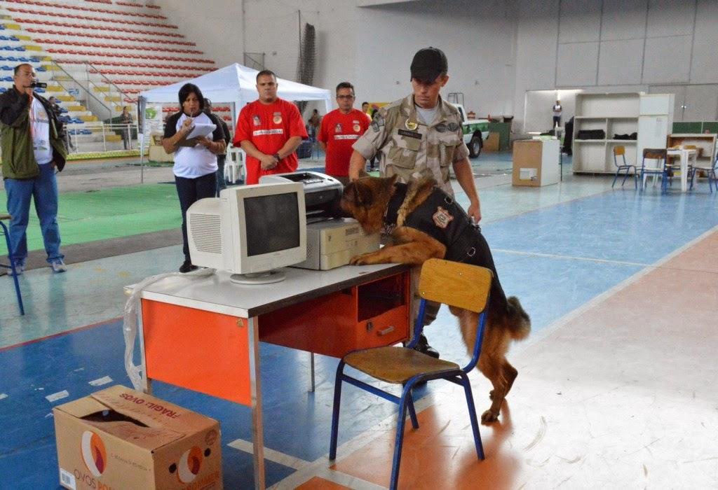 Encontro de equipes K9 conta com provas com cães treinados