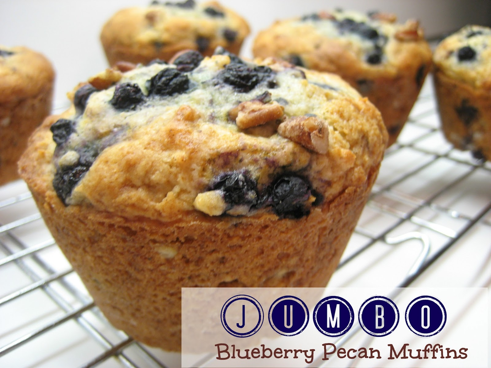... muffins coconut blueberry muffins blueberry corn muffins whole wheat