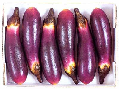 Permalink to Benefits and Efficacy of Purple Eggplant