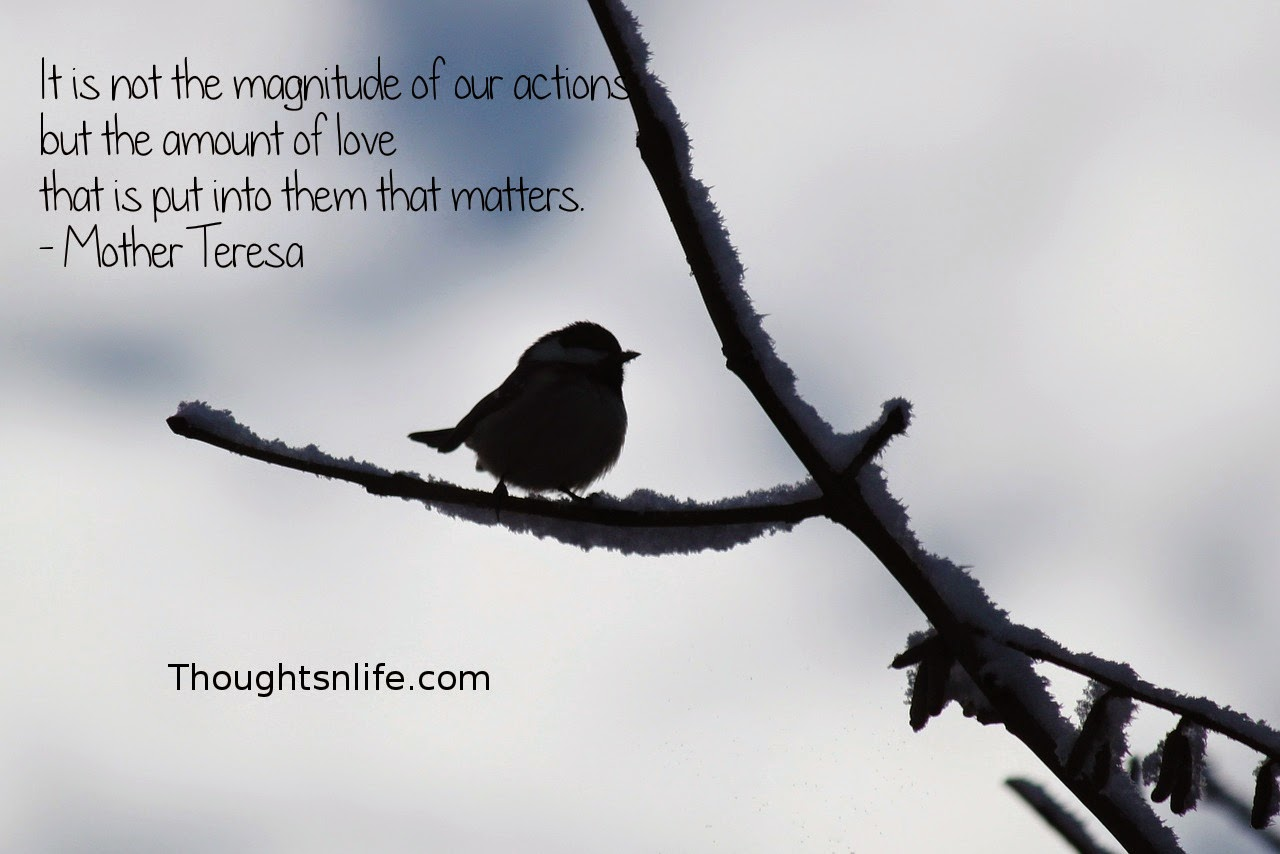 Thoughtsnlife.com: It is not the magnitude of our actions but the amount of love that is put into them that matters. - Mother Teresa
