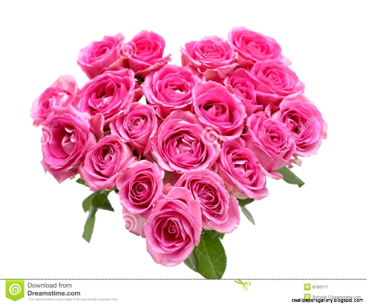 Pink Roses Heart Royalty Free Stock Photography   Image 8160117