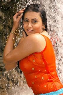Namitha maya Hot sexy HD wallpapers gallery collection