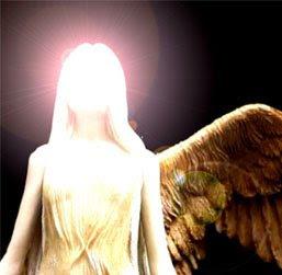 Amar sozinho é tentar voar com uma só asa.