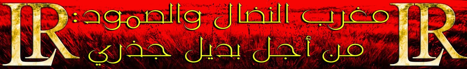 مغرب النضال والصمود: من أجل بديل جذري