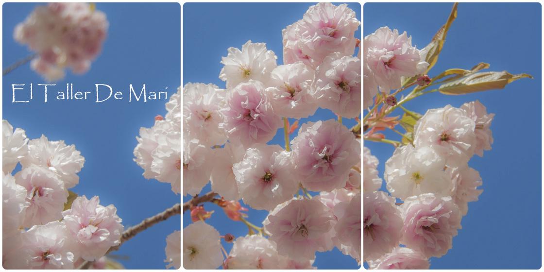 El Taller de Mari