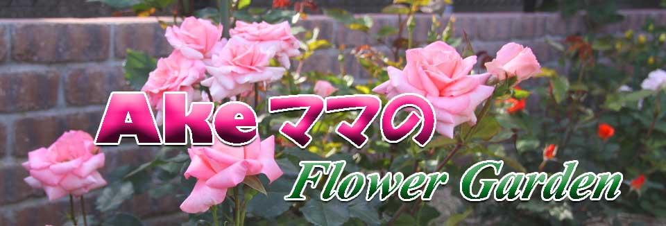 Akeママ の Flower Garden