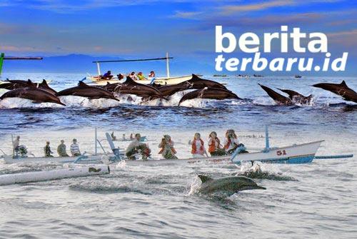 Menikmati Wisata Lumba-lumba di Pantai Lovina Bali