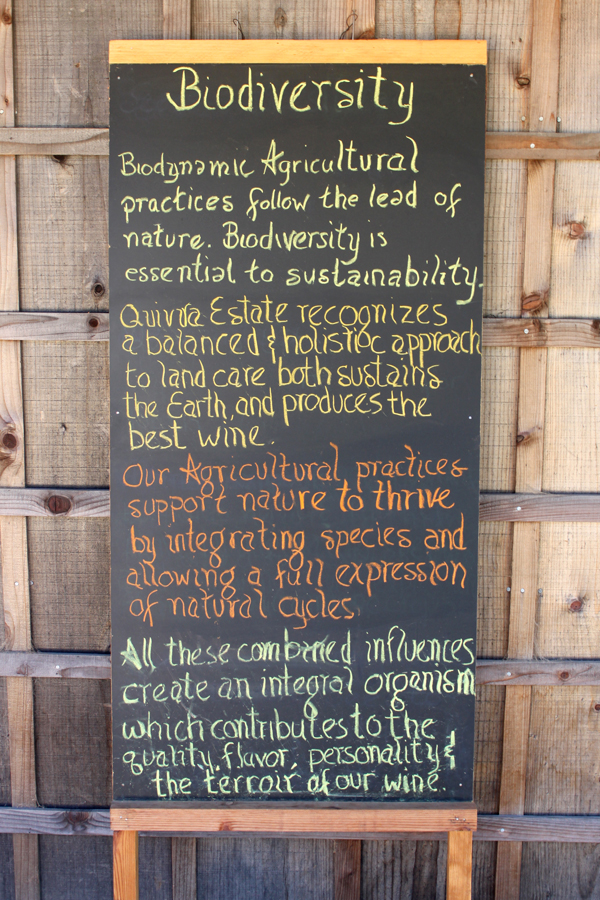 Biodynamic farming at Quivira, Healdsburg, CA