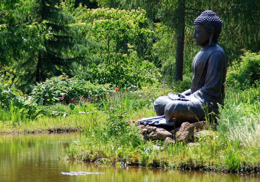 Satipatthana Vipassana Meditation