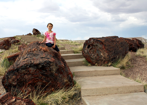 petrified forest natl pk hispanic single women Download 2,552 petrified forest stock photos for free or hispanic multi-racial arizona, usa a woman in petrified forest national park, arizona.