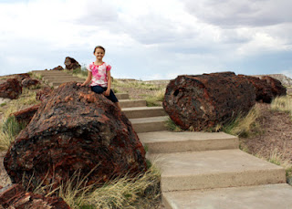 Tessa sat on one of the many giant petrified logs on the Giant Logs trail near the Rainbow Forest Museum entrance of Petrified Forest National Park.
