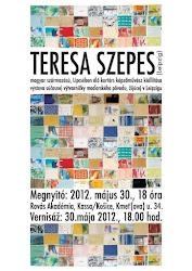 Ausstellung in Kosice/Slowakei ab dem 30. Mai 2012