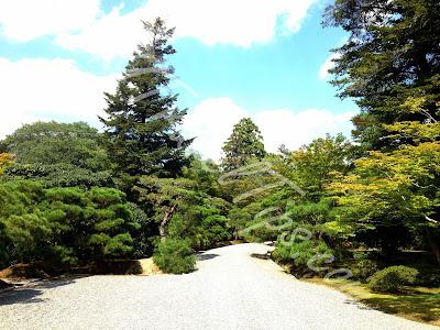 Pebbled path at start of Shugakuin Villa tour