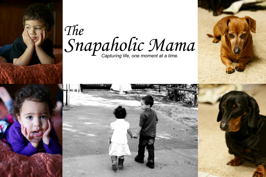 The Snapaholic Mama