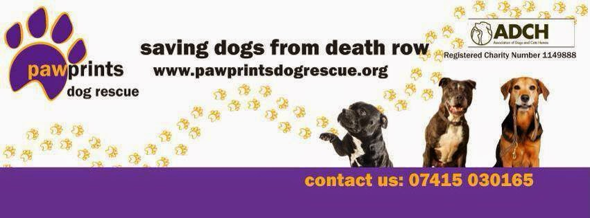 Annie & Trevor Gay are raising funds for Pawprints Dog Rescue