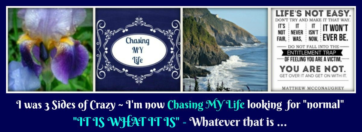 Chasing My Life