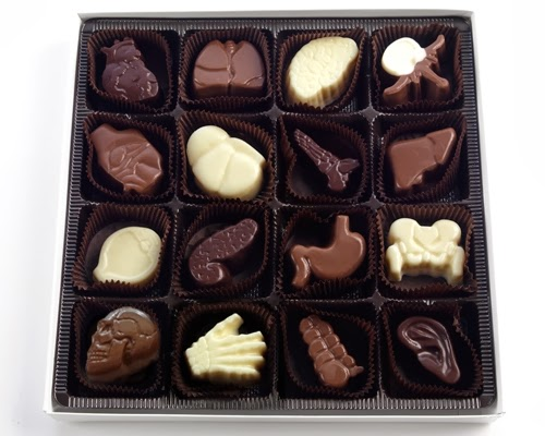 01-16-Piece-Box-Visual-Anatomy-Chocolate-Anatomy-Medical-Illustration-Studio-Tina-Pavatos-www-designstack-co