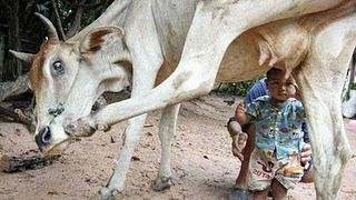 أنظروا ماذا يفعل هذا الولد بعدما هجرته أمه!!