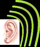 pendengaran 4 dimensi