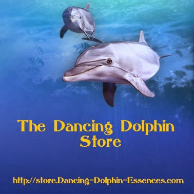 The Dancing Dolphin Store