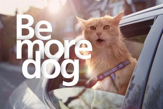 O2, telefónica, ser más perro, gato