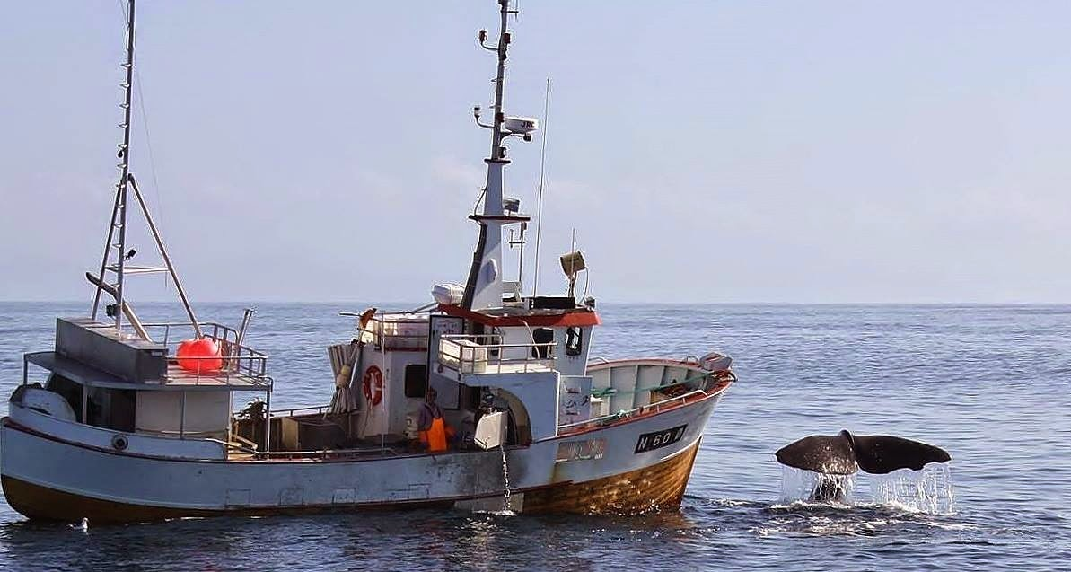 Kalastaja Kuivalla Maalla
