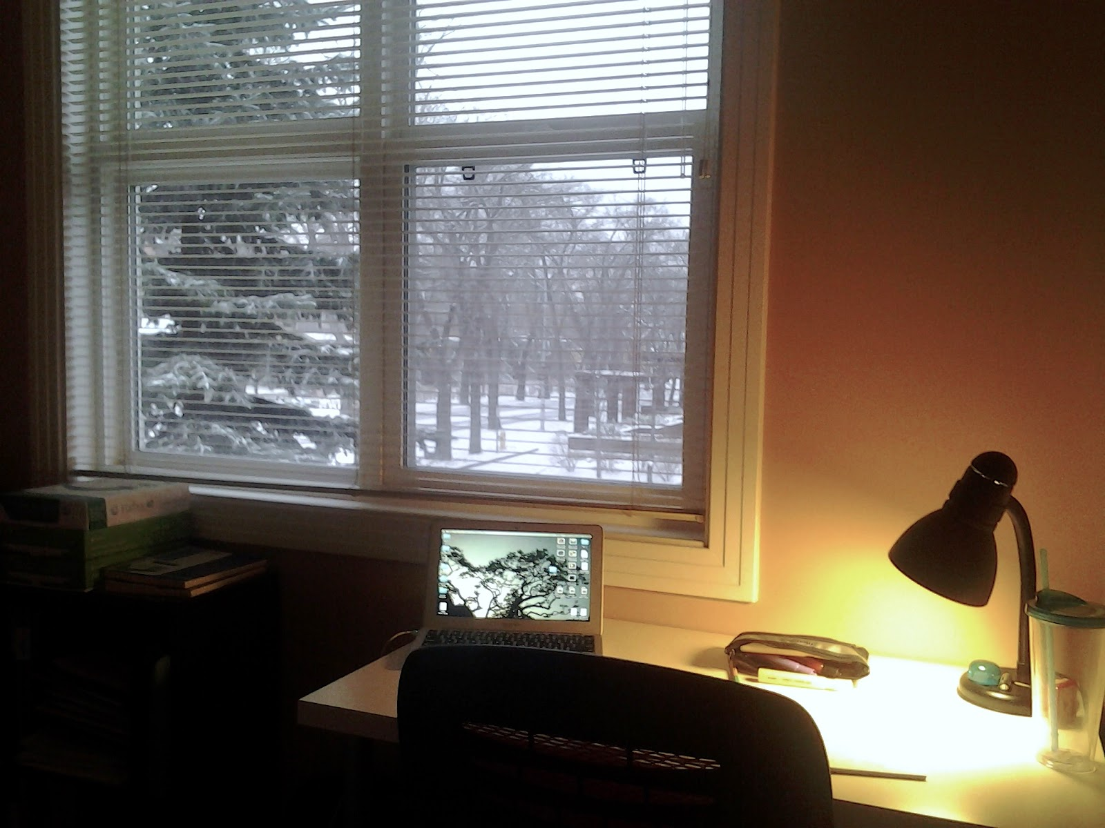snow edmonton
