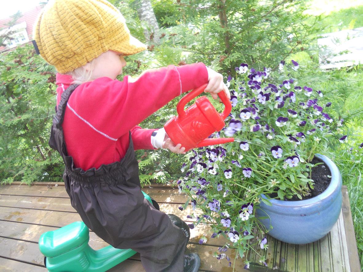 Käytiin kastelemassa mummon kukkia. Mun porukat on aina kesäisin  viikkotolkulla veneilemässä 9d7a36c708