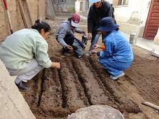 mdulo jardinera de plantas medicinales y huertos domsticos